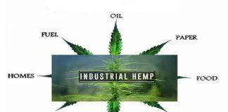 Hemp_Industry