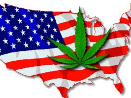 US Cannabis