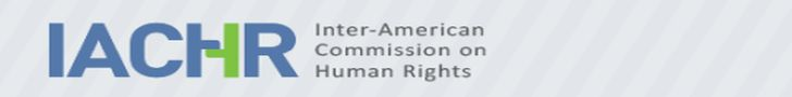 Caribbean News Global iachr728 Declaration of the secretary-general on the designation of the executive secretary of the IACHR