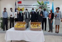 Caribbean News Global lucian_bananas-218x150 Home